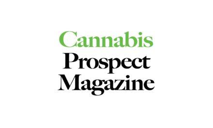 Cannabis Prospect Magazine