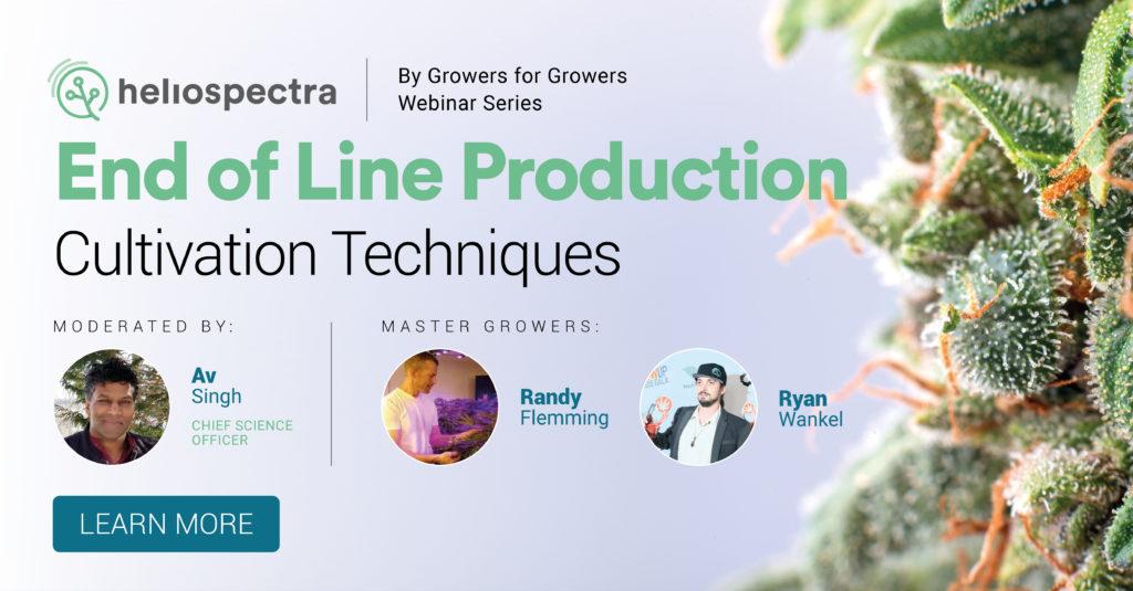 Webinar Series: End of Line Production Cultivation Techniques