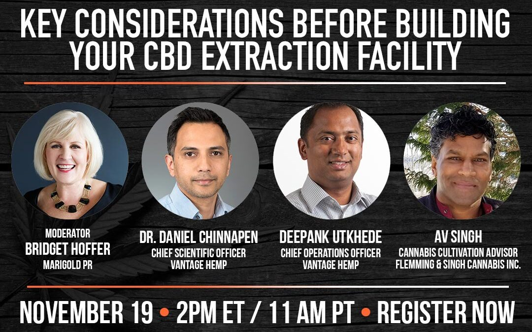 Key Considerations Before Building Your CBD Extraction Facility