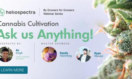 Webinar Series: Cannabis Cultivation – Ask us Anything!